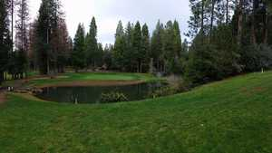 Forest Meadows GC: #9