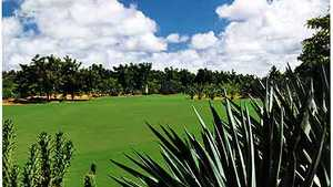 Golf De Saly: #6