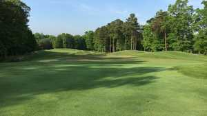 Forest Greens GC