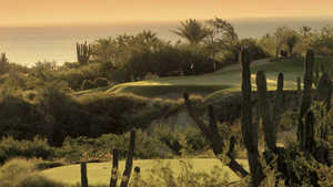 One&Only Palmilla GC - Arroyo