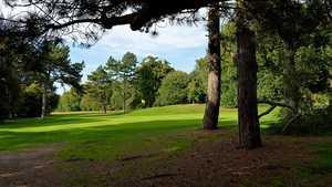 Wimbledon Common Golf