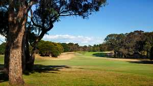 Curlewis GC