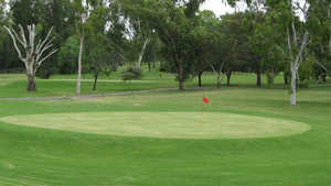Moree GC
