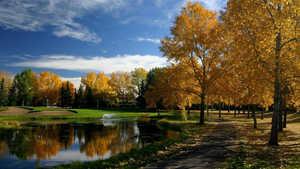 Silver Springs GCC: #13