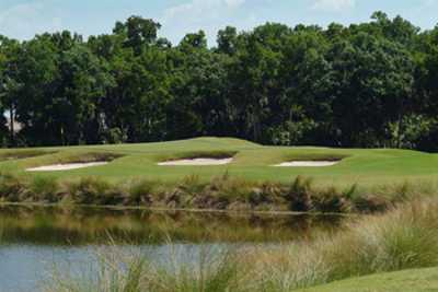 Tributary At River Strand Golf And Country Club In