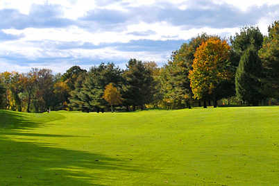 Hillsborough County New Home Grass Code