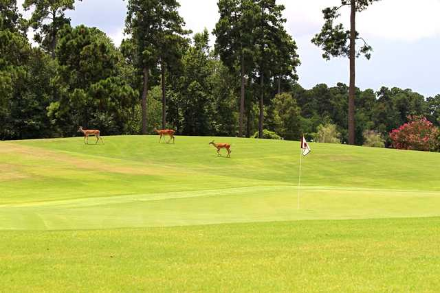 The Club At Carlton Woods - Nicklaus Course in The ...