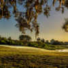 Looking back from a green at Kissimmee Bay Country Club.