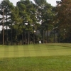 A view of green at Mulligans Golf