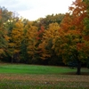 A fall view of green at Hillview Golf Course