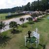 A view from 401 Par Golf