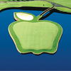 A view of the apple shaped 17th green surrounded by water at Apple Tree Golf Course