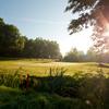 A view from Golf Club Botanika.