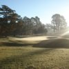 A sunny view of a green at Farmville Country Club