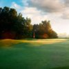 A view of green at Mazury Golf & Country Club