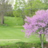 A spring view from West View Golf Course