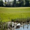 A view of the 13th hole at Navan Golf Club