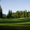 A view of fairway #14 at Semiahmoo Golf & Country Club