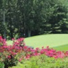 A view of a green at Biltmore Forest Country Club