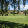 A view of the 8th green at Los Naranjos Golf Club