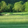 A view of a green at Dunmurry Springs Golf Club