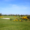 A view of a green surrounded by flowers and bunkers at Navan Golf Club