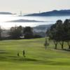 A view from Berkeley Country Club
