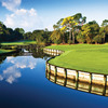 A view of the 3rd green at Innisbrook Resort & Golf Club - North Course