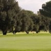A view of a green at Encino from Sepulveda Golf Complex (City of LA)