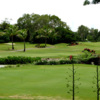 A view of the practice putting green at Bay Path Golf Course