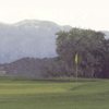 A view of a green at Hollydot Golf Course