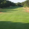 A view of a fairway at Chequessett Yacht & Country Club