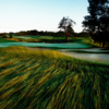 A view of a green at Falmouth Country Club