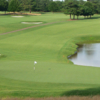A view of a green with water coming into play at Carolina Golf & Country Club
