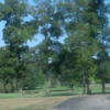 A view from Turtle Creek Golf Course