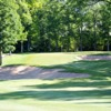 A view of green #17 at Whispering Springs Golf Club
