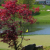 A view of a hole at Rockland Country Club