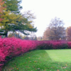 A view of a tee at Apple Ridge Country Club