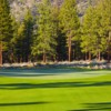A sunny day view of a green at Clear Creek Tahoe Golf Club