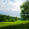 A view of hole #3 at Flynn from Huntingdon Valley Country Club