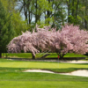 A spring view of a hole at Trenton Country Club