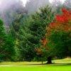 A view from Cedar Bend Golf Club