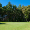 A view of a green at Swanson Meadows Golf Course