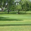A view of a green surrounded by trees at Midway Par 3 Golf Course