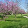 A spring view from the Golf Club at Yankee Trace