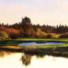 Meadows at Sunriver Resort: View from #18