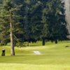 A view of a green at Linden Golf & Country Club