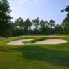 A view of a hole at Cobblestone Park Golf Club