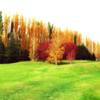 A fall view from Golf Club General Roca