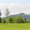 A view of a hole at Millbrook Golf Course (Visitwicklow)